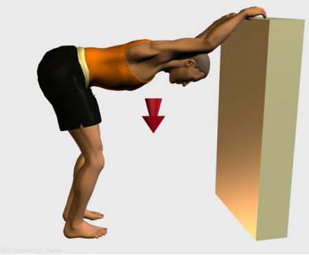 Estiramientos dorsal y lumbar